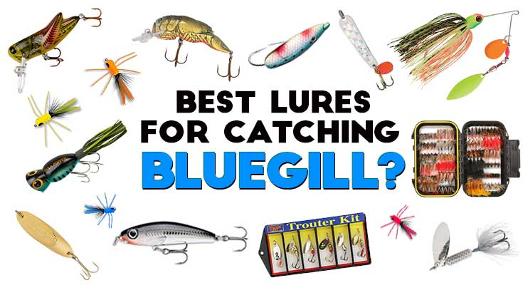 Best Artificial Bait for Bluegill, Crappie and other Sunfish