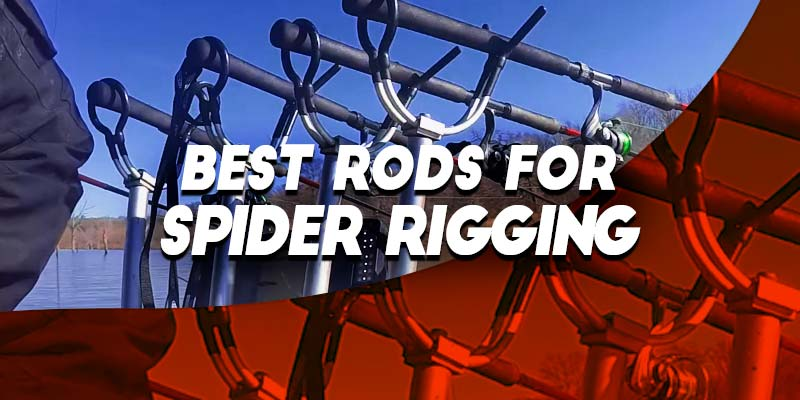 Best Crappie Rod - Guide - Spin, Jigging, Trolling & Spider
