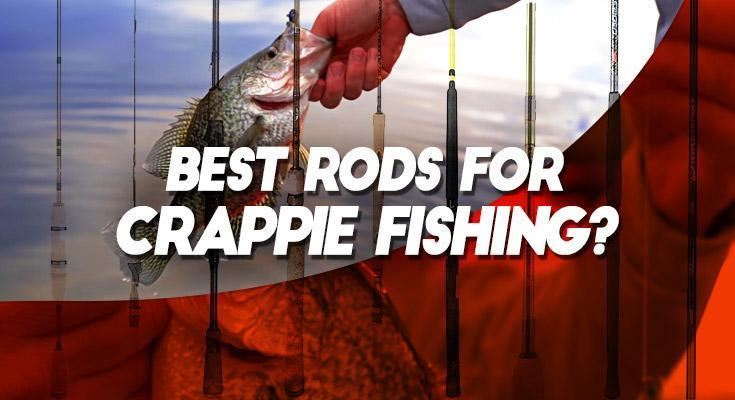 Best Crappie Rod - Guide - Spin, Jigging, Trolling & Spider Rigging